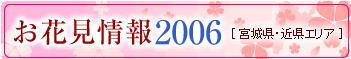 2006-hanami1.jpg