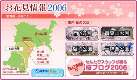 2006-hanami2.jpg